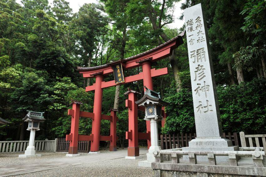 新潟県内で最も格式高く、人気もピカイチの弥彦神社